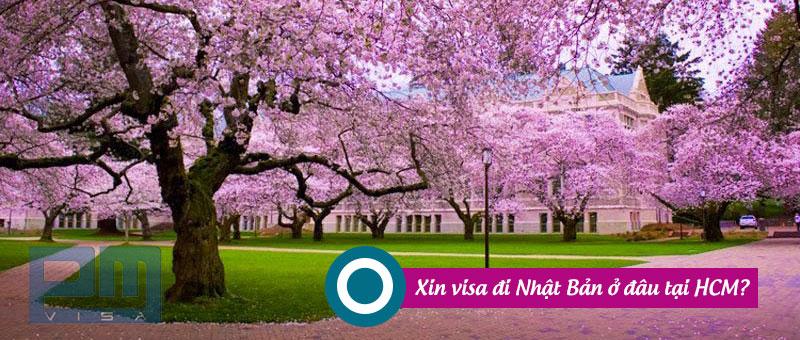 Xin visa đi Nhật Bản ở đâu tại Hồ Chí Minh?